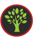 blog, bananenmeel, recept, ontbijt, ontbijtrecept, gezond ontbijt, gezond ontbijtrecept, glutenvrij, lactosevrij, makkelijk recept, biologisch, biologisch recept, biologische ingrediënten, biologische foodblog, fooblog, organic happiness